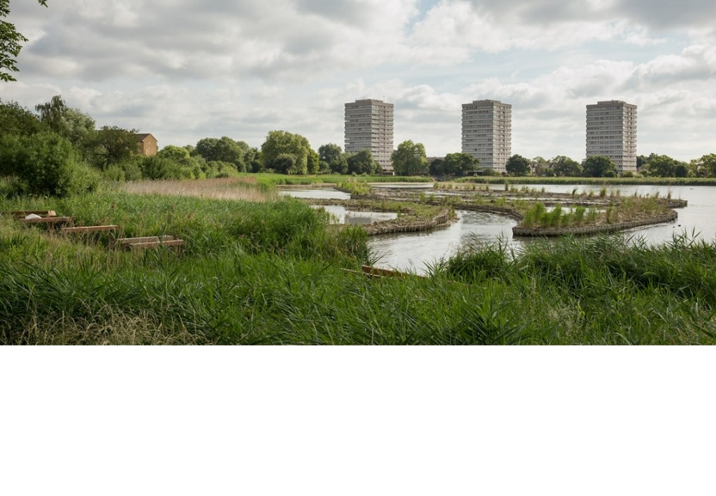 http://www.woodberrywetlands.org.uk/wp-content/uploads/2015/09/Z7W1269-1140x550.jpg